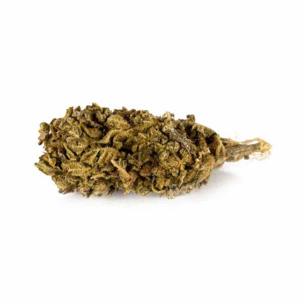 CBD Blüten Premium Gorilla Glue – 9% CBD
