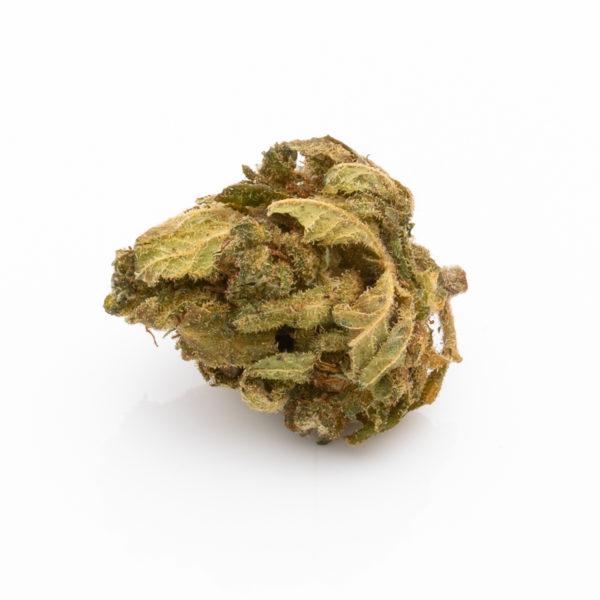 Premium CBD Blüten Jack Herer – 10,86% CBD