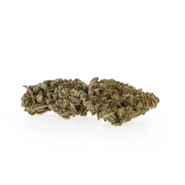 Premium CBD Blüten Black Berry EU – 9,46% CBD