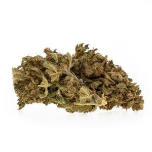 Premium CBD Blüten Gelato EU – 3,55% CBD